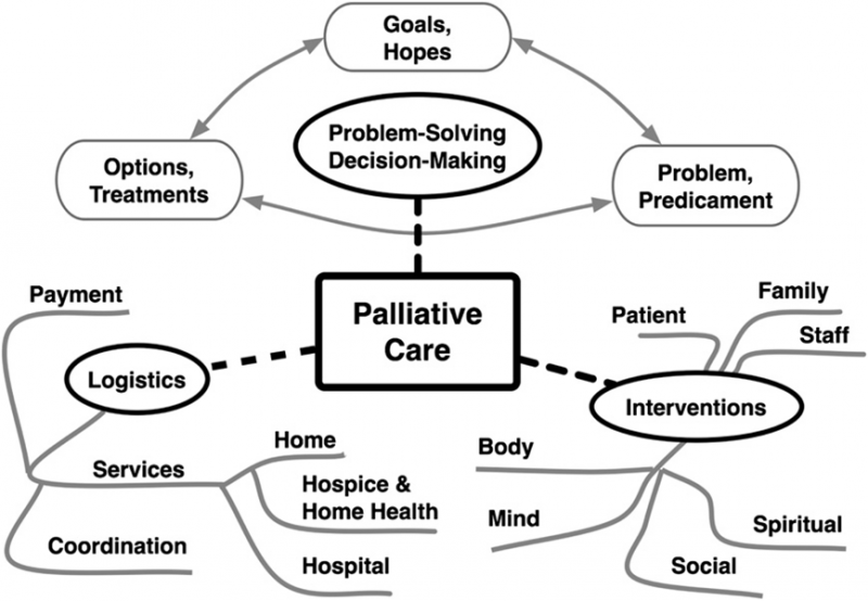 hospice and palliative medicine handbook a clinical guide